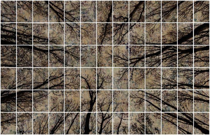 Manuel Felisi :: Alberi / Trees, 2014, tecnica mista su tela / mixed media on canvas