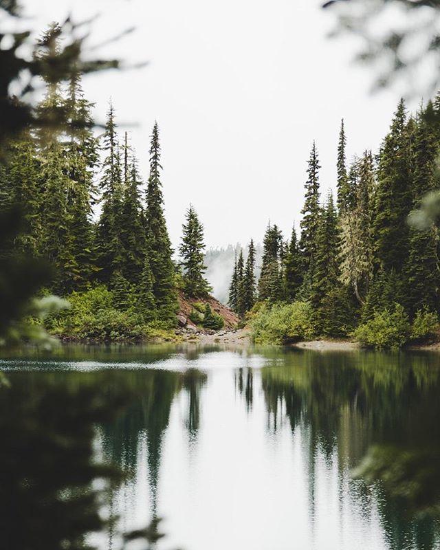 ... #Photos #Photography #Nature