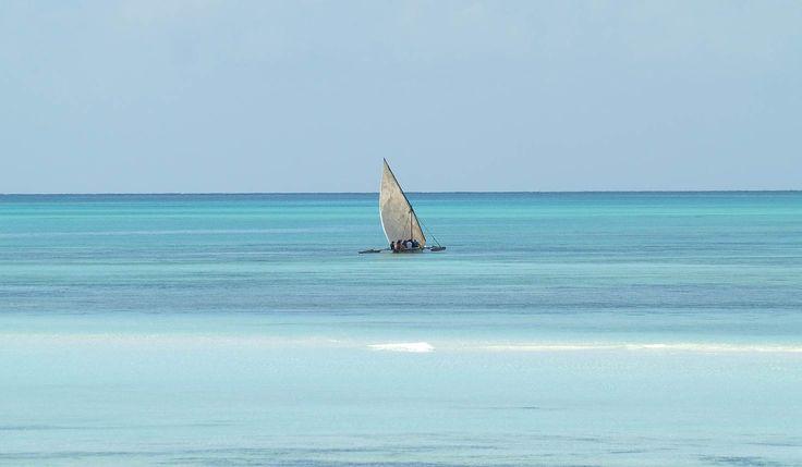 Tanzania Coast > Tanzania Safari & Beach Trips