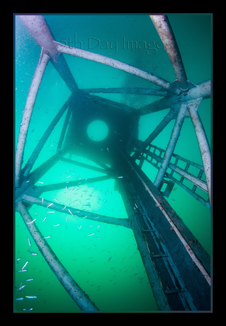 5th Day Images Page 1- Dive HMAS Adelaide Wreck at Terrigal #3