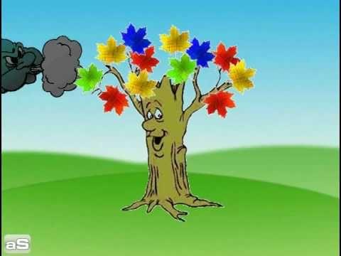 El árbol que no tenía hojas - YouTube