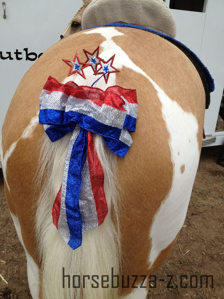 20 Best 4th Of July Horses Images On Pinterest Horses