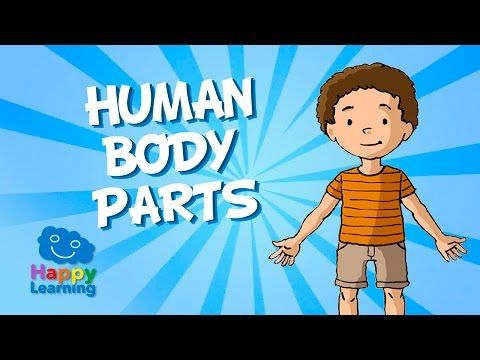 Las Partes del Cuerpo Humano en Inglés. Videos Educativos para Niños - YouTube
