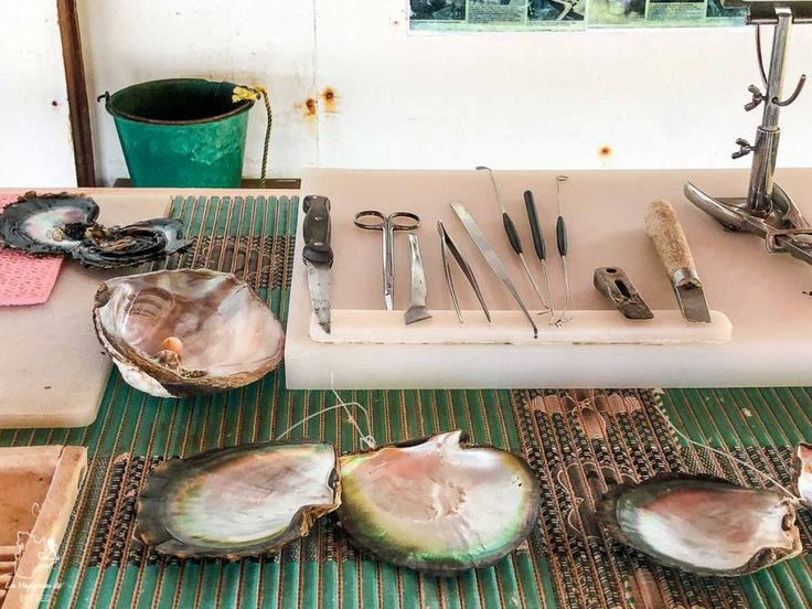 Ferme perlière à visiter en Polynésie française sur l'île de Taha'a dans mo…