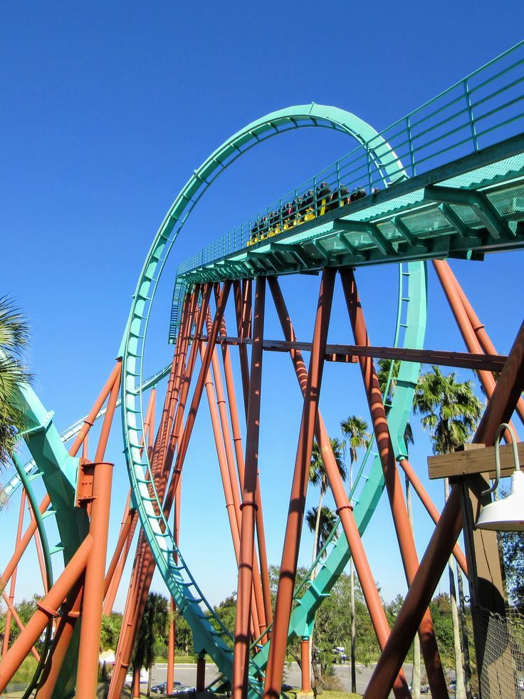 Visiting Busch Gardens Tampa Bay A Review + Tips