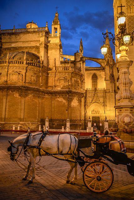 Carro del caballo en la catedral de Sevilla en la noche - Sevilla, España