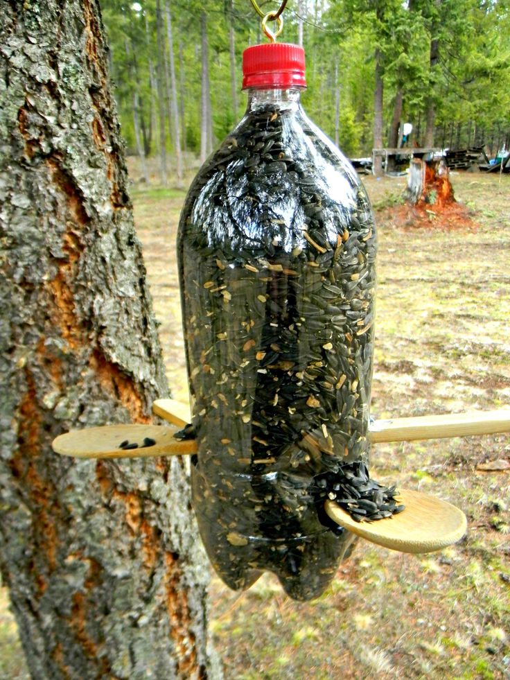 Home made bird feeder, made out of a plastic 2-liter water bottle and two wooden spoons. Really easy to make, and the birds love it.