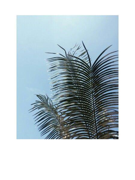Blue sky...♥♥ by:hilma/재순