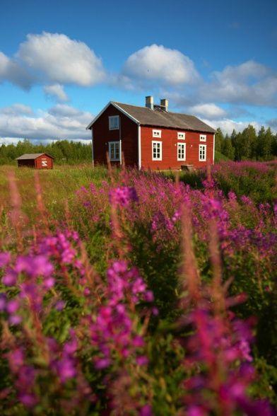 Sweden | by Ewen Bell