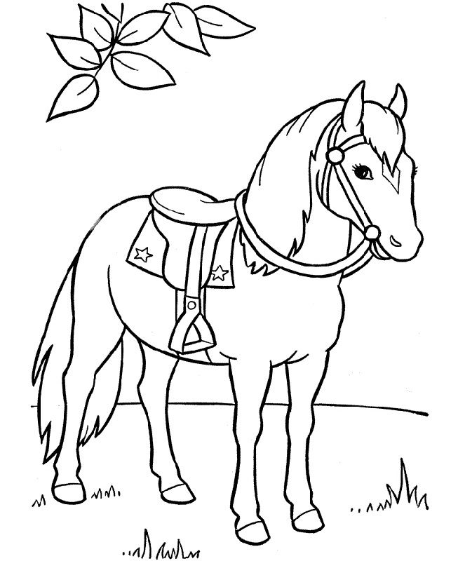 Free Printable Horse Coloring Pages For Kids | 800x653