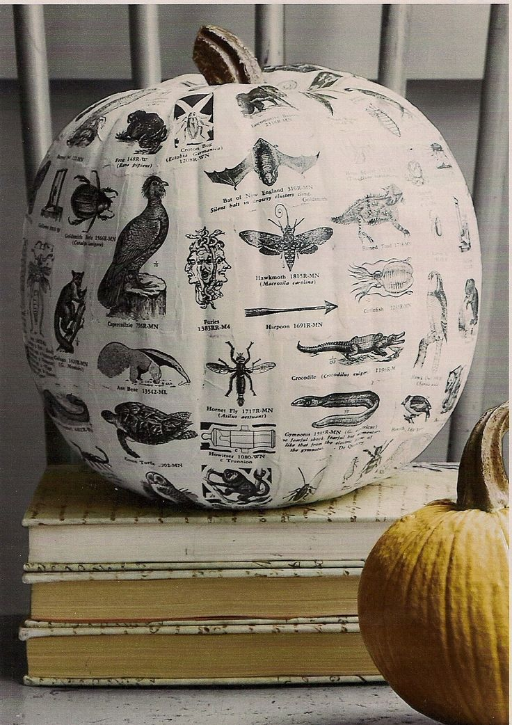 Country Living Inspired: Découpage a Pumpkin.  I did this last fall with paper napkins that had a fall leaf print.  I roughly cut out groups of leaves.  It is easy but took me several days because I let each section dry. Found Funkin pumpkins cheap at Meijers.