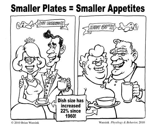 Large Plate Mistake