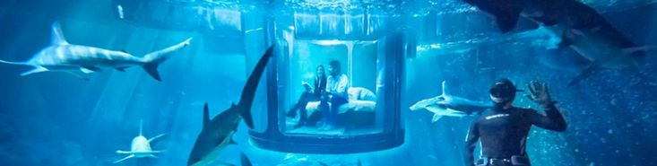 Airbnb is offering a night in an underwater bedroom surrounded by 35 sharks