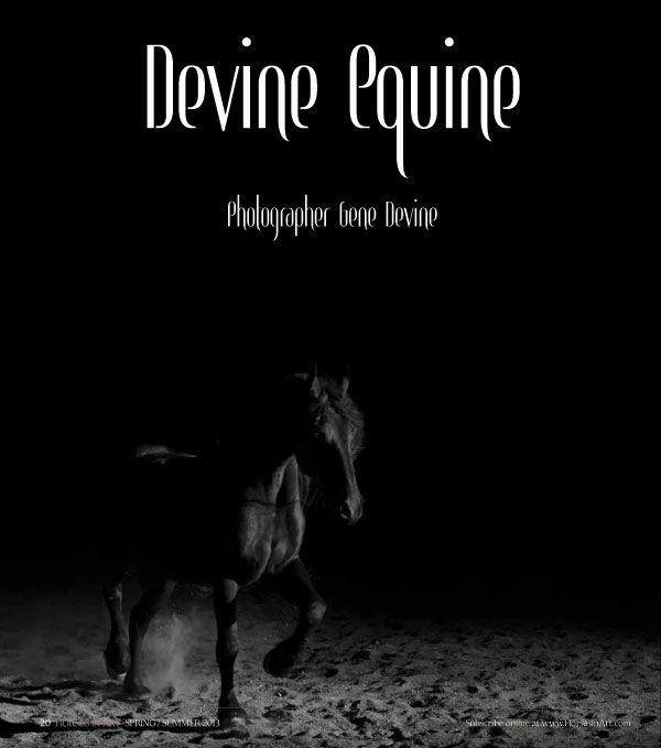 Gene Devine in Horses in Art magazine