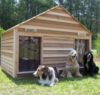Goliath Duplex Dog House with heating and air con - sure the dogs would live this