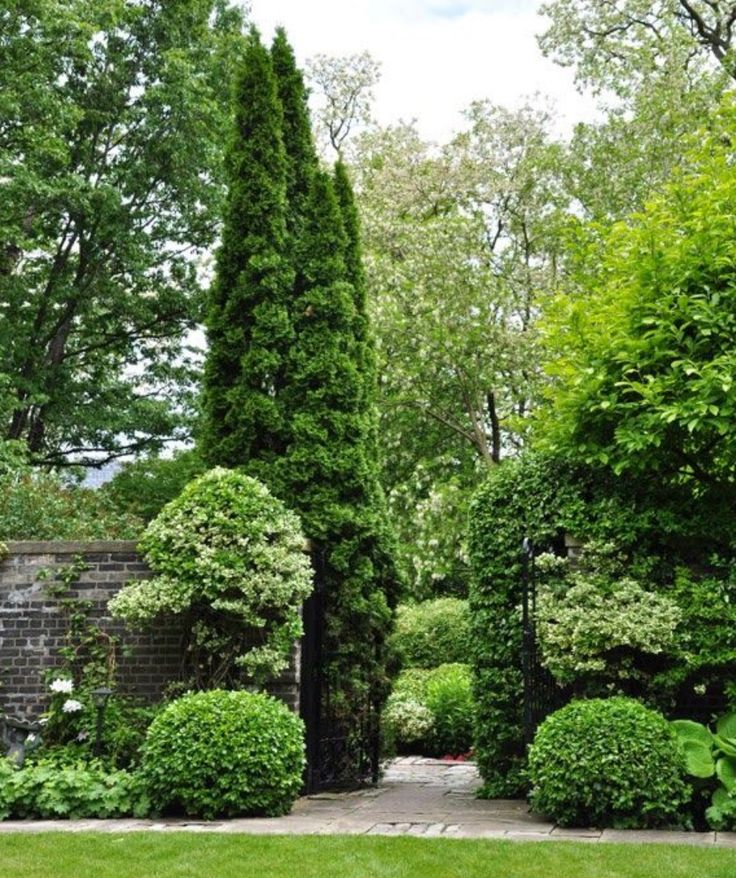 460 Best Images About Beautiful Green And White Classic Garden
