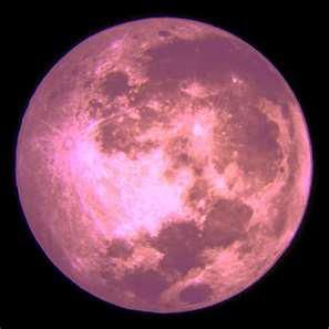 The pink moon.