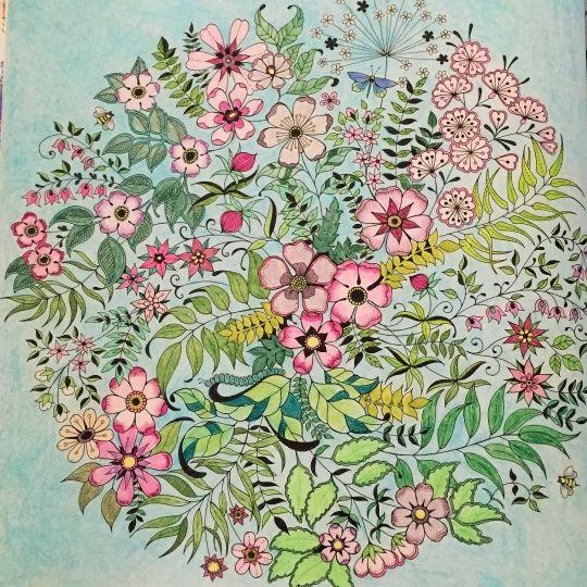 Johanna Basford Colouring Gallery Colorindo Coloring Books Secret Garden Pinterest
