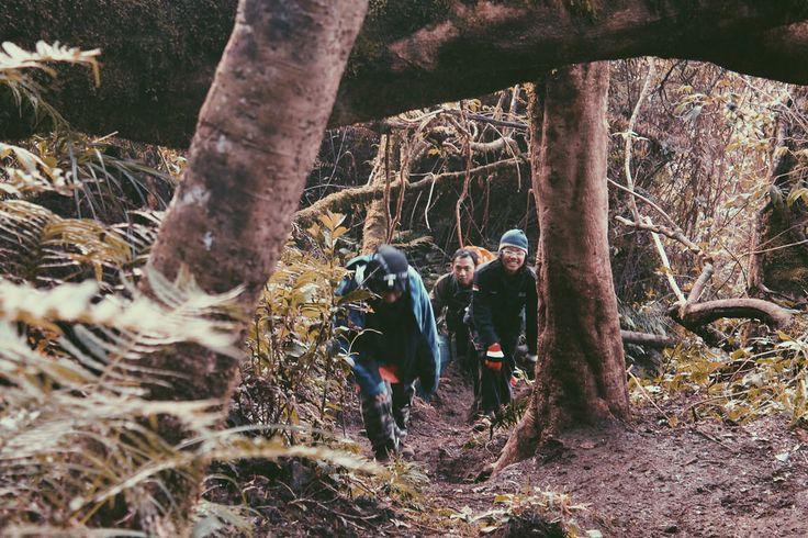 Catatan Perjalanan : Pendakian Pangrango-Gede, April 2013 (Bagian 2)