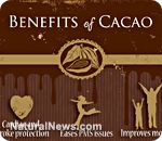 Not only does it taste good, it's good for you! Learn more about the many benefits of cacao beans.