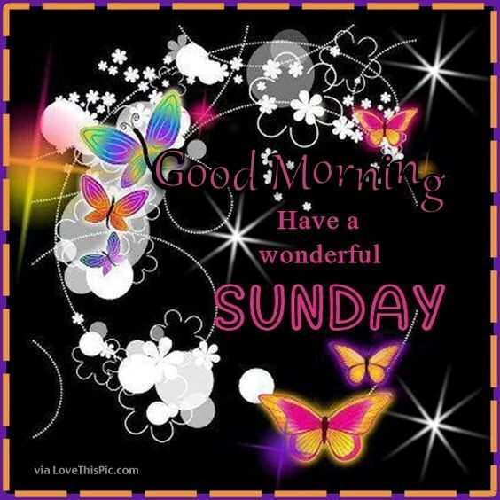Good Morning Have A Wonderful Sunday Image good morning sunday sunday quotes good morning quotes happy sunday sunday quote happy sunday quotes good morning sunday beautiful sunday quotes sunday quotes for friends and family