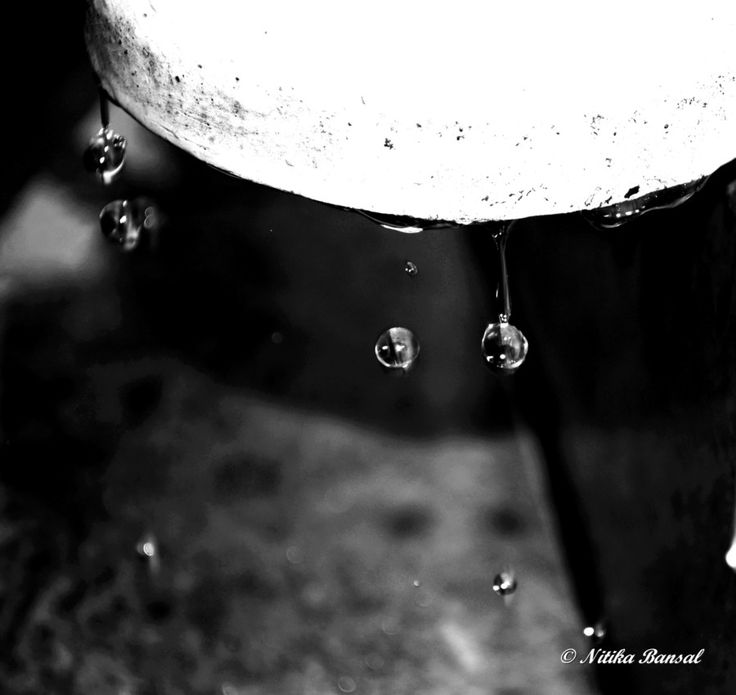 Water Drops by Nitika on 500px