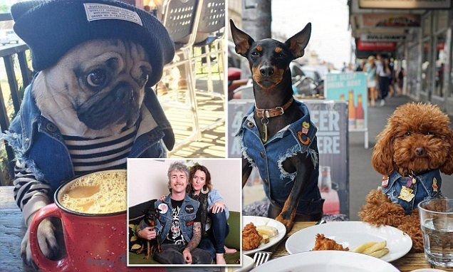 Woman quits fashion job to design denim jackets for her dog