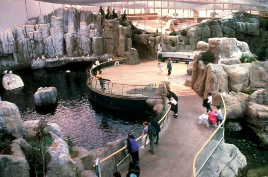 The Montreal Biodome allows you to experience four of the most beautiful ecosystems of the Americas