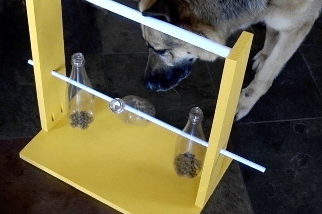 How To Make A Spinning Bottle Puzzle Feeder For Dogs Dog Puzzles
