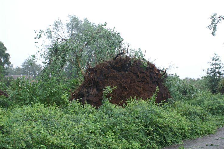 Downburst Hoogeveen 2007.