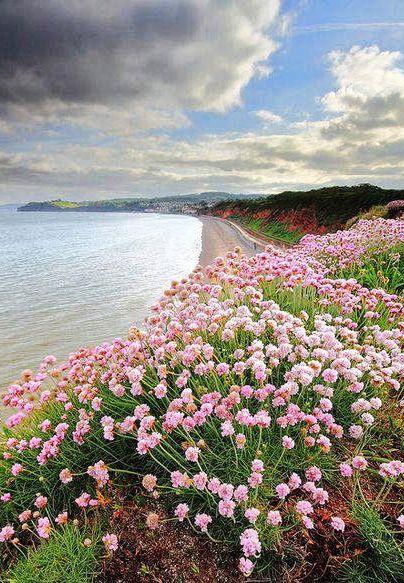 Dawlish, Devon, England: - holidayspots4u