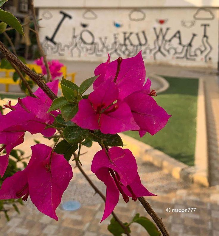 اللهم آمنا في أوطاننا I Kuwait شهر ومضان تصوير الكويت مدينة الكويت Rise Up Kuwait Kuwaitcity Ktown Kuwait Shots Kuwait Shots Be