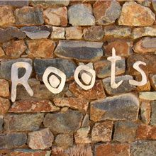 Roots at Forum Homini http://www.eatout.co.za/venue/roots-at-forum-homini/