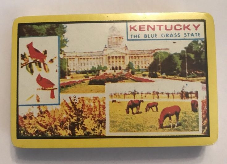 Kentucky Playing Cards Sealed Deck The blue grass state  #Kentucky #ebay #vintage #playingcards