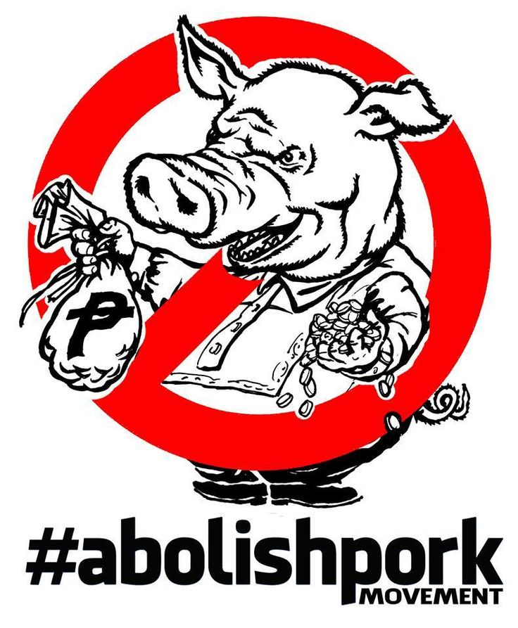 abolishing the pork barrel On its face, the pork barrel system appears to be a democratic way of apportioning government resources inherited from the united states, this scheme is supposed to allocate funds equally to every congressional district to be used for the residents' most urgent needs.