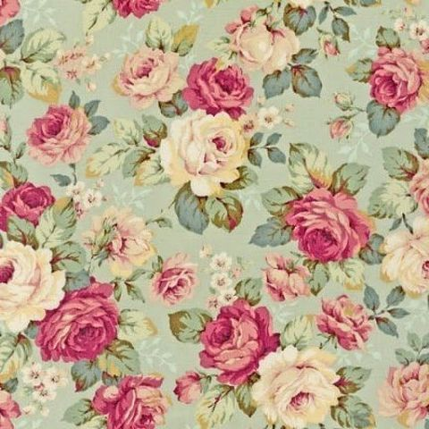 Pink and white roses on pale green.