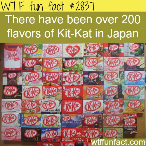 The flavors of Kit Kat in Japan -  WTF fun facts. Not fair