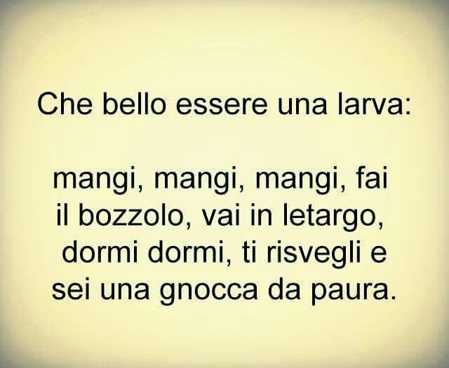 87 best ridere fau0027 bene images on Pinterest Hilarious, Smile and - k che poco dom ne