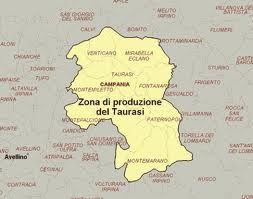 Taurasi DOCG Zona di produzione: intero territorio dei comuni di Taurasi, Bonito, Castelfranci, Castelvetere sul Calore, Fontanarosa, Lapio, Luogosano, Mirabella Eclano, Montefalcione, Montemarano, Montemileto, Paternopoli, Pietradefusi, Sant'Angelo all'Esca, San Mango sul Calore, Torre le Nocelle e Venticano, tutti in provincia di Avellino. Il Taurasi è un eccellente vino campano che, pur non essendo molto famoso, è da considerarsi uno dei migliori vini del Mezzogiorno d'Italia. La zona di…