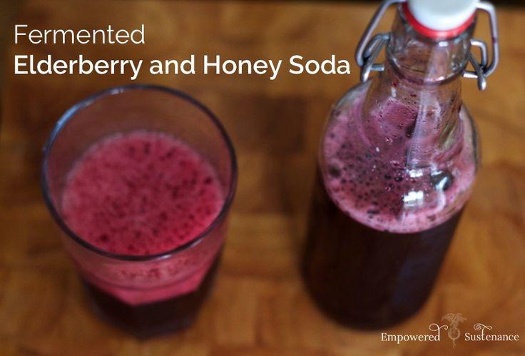 Fermented elderberry and honey soda recipe probiotic