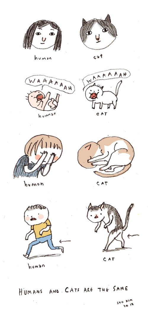 They are not that different from us. | 36 Illustrated Truths About Cats