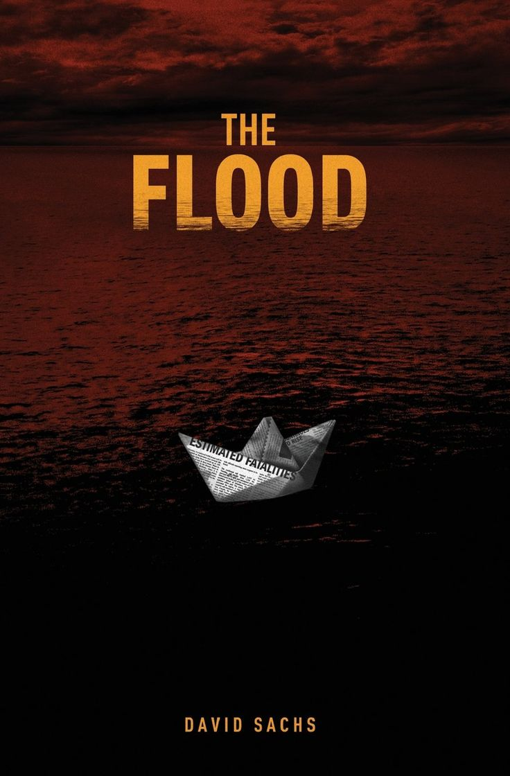The Flood by David Sachs   Review at http://cdnbookworm.blogspot.ca/2015/06/the-flood.html