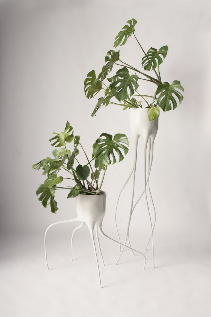 Love these weirdo plant stands!