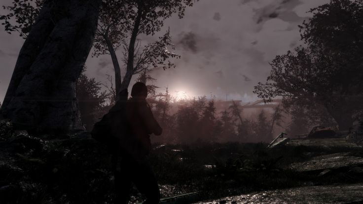 Sunset at the horizon of the forest of Boston #Fallout4 #gaming #Fallout #Bethesda #games #PS4share #PS4 #FO4