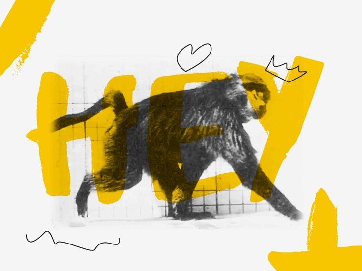 Hey Dude by Levan Zazarashvili - Dribbble