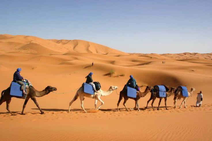 Stai pianificando un tour in Marocco per i prossimi mesi? Contatta Nomade Experiences per essere sicuro di vivere le più incantevoli esperienze che il Marocco offre.  http://www.nomadexperience.it/