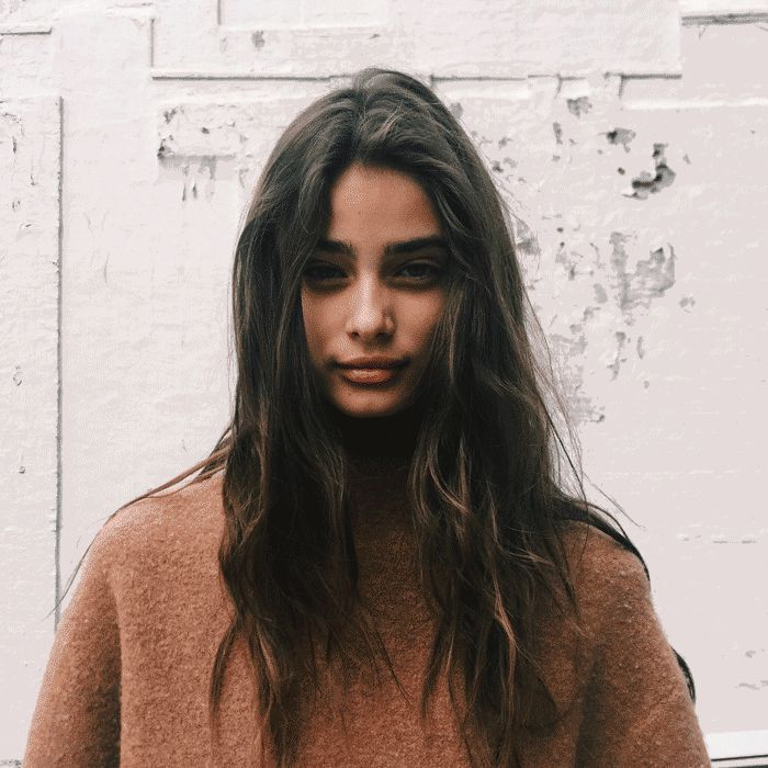 Taylor hill modell