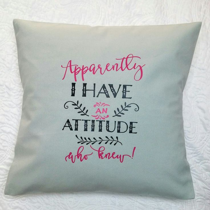 Funny pillow cover.