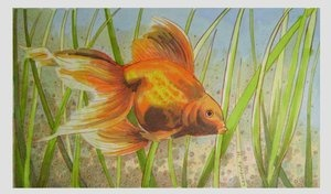 Goldfish made with Letraset Markers