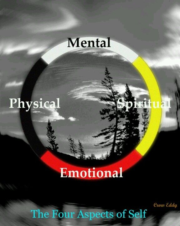"""A Warrior May Face A Different Battle Each Day. When He Does, He Must Know The Difference... Through Is Own Strength   Medicine wheel"